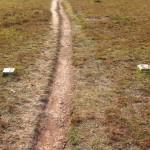 Vyznačená odminovaná stezka