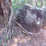 Site 2, planina džbánů