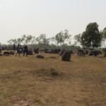 Site 1, planina džbánů a stan UNESCO