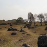 Site 1, planina džbánů