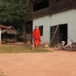 Mnich a jeho štěňátka