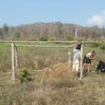 Farma 2014, stavíme kurník pro slepice