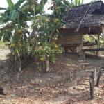 Jedna z chatek na farmě