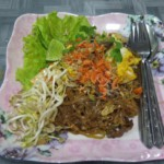 Pad Thai se sušenými krevetami