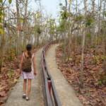 Cesta do Pai kaňon
