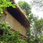 Náš první bungalow v Naga guesthouse